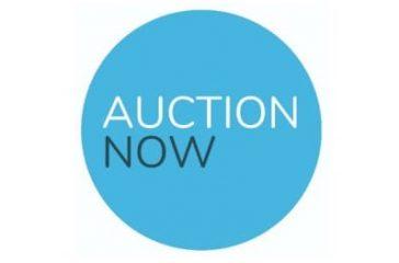 auctionnow