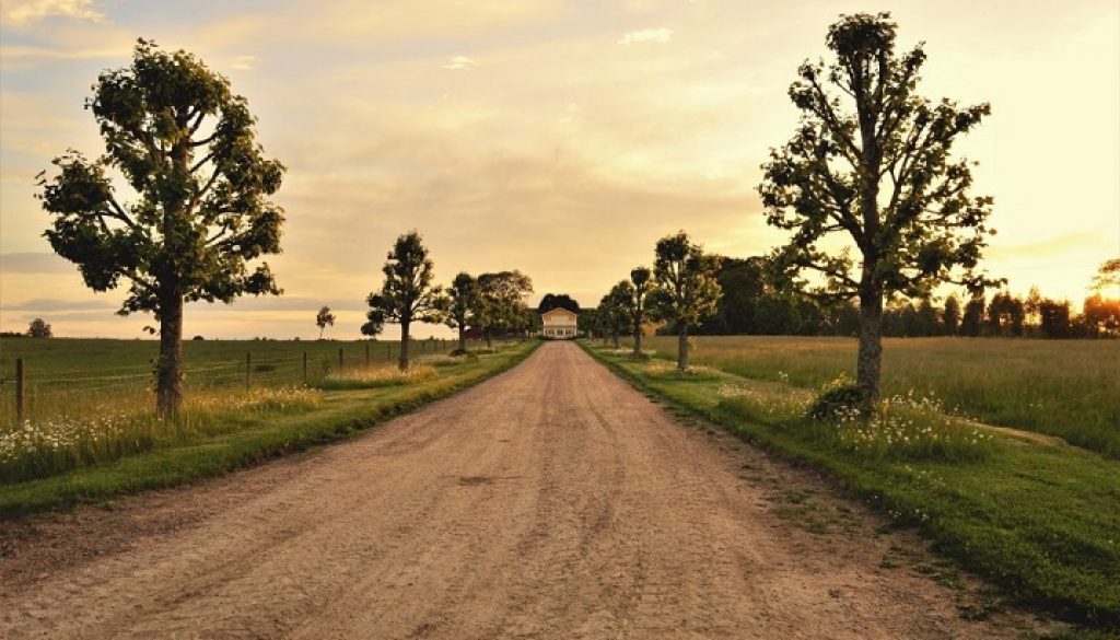 Ins and outs of escaping to the country
