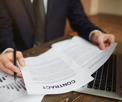 Business Advisor Working with Documentation